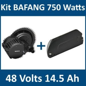 kit bafang 750 watts